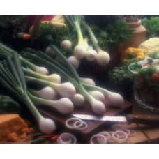 Baby Vidalia Onions